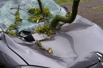 Driver Escapes Injury